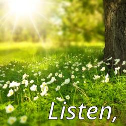Art Icon - Listen